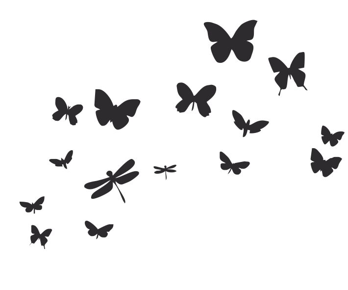 Laminas de mariposas related keywords suggestions for Vinilos mariposas